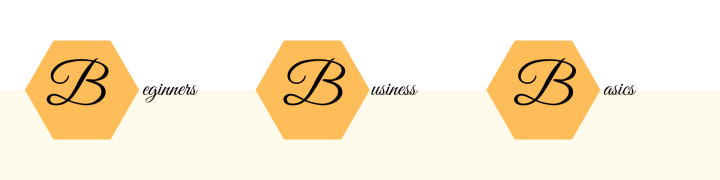Beginners Business Basics Digital business startup workbook